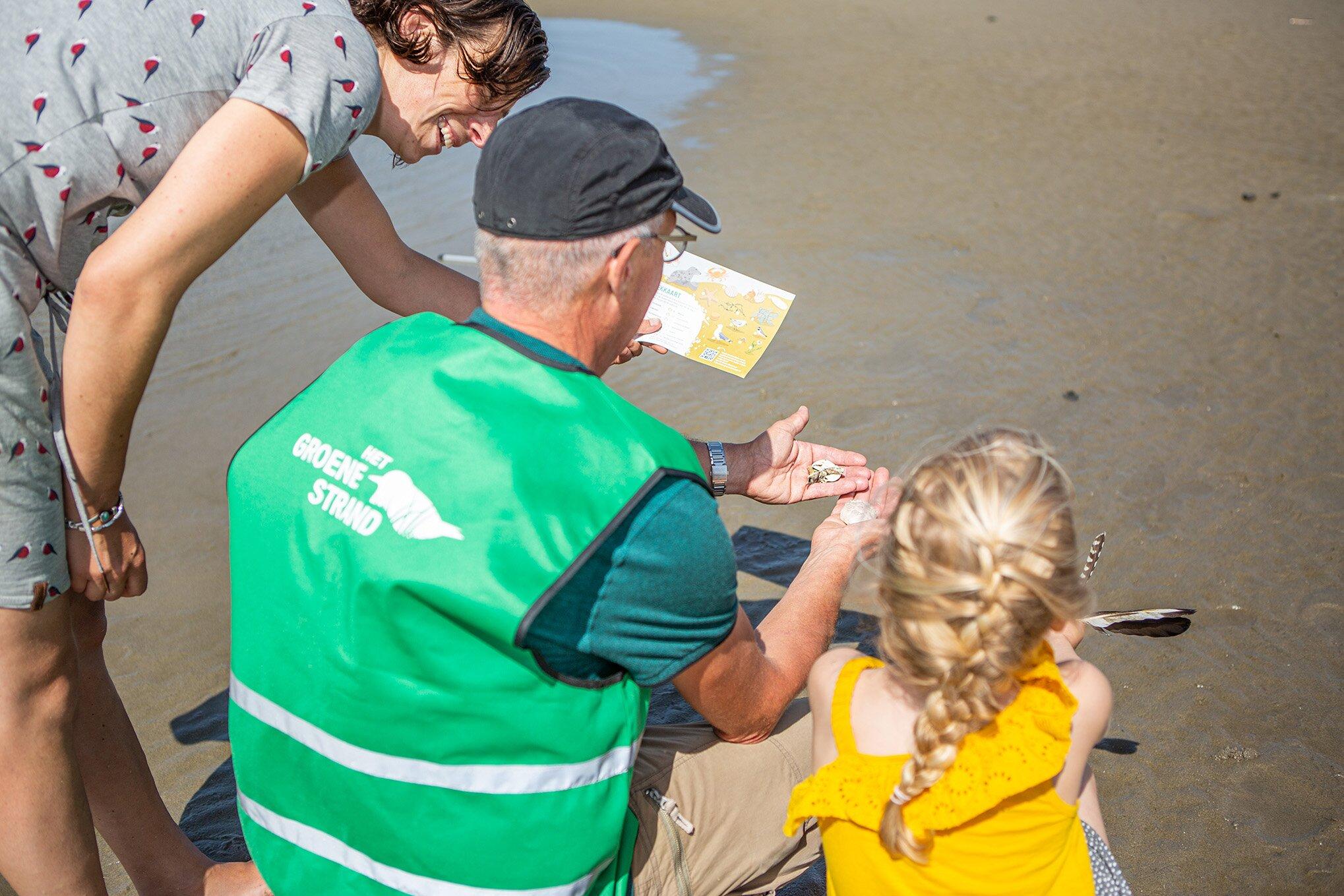 Ontdek het strandleven met de zoekkaart van het Groene Strand